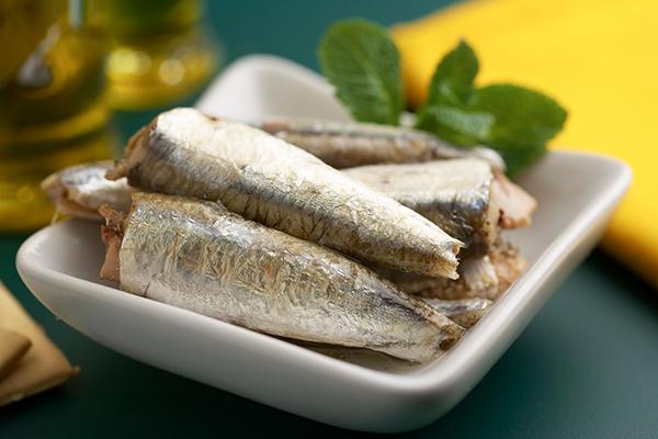 sardinas conservas