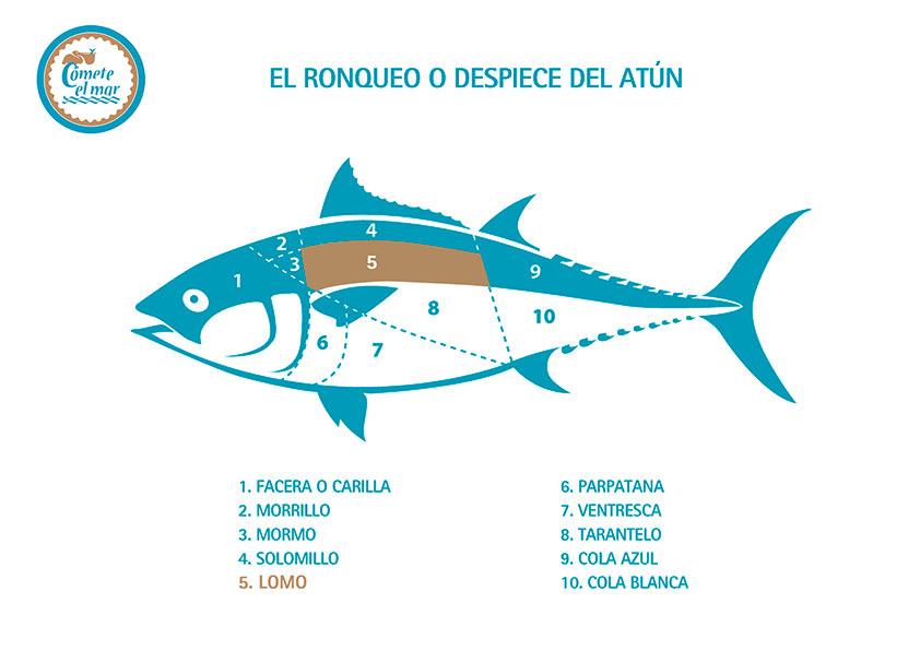 lomo_atun_rojo_salvaje_almadraba_ronqueo_cometeelmar