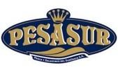 Pesasur
