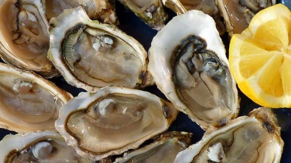 Sorteo de 4 invitaciones para una degustación de ostras.
